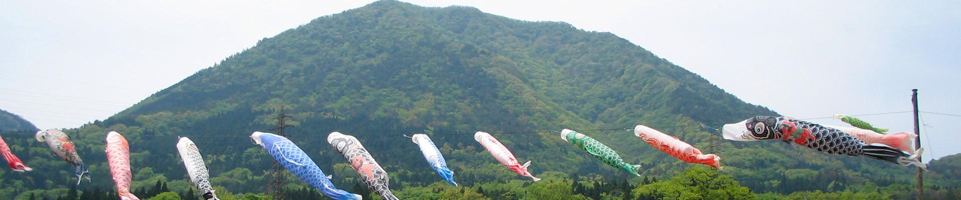 津和野の最高峰青野山の山麓より自然そのままの味を皆様へ